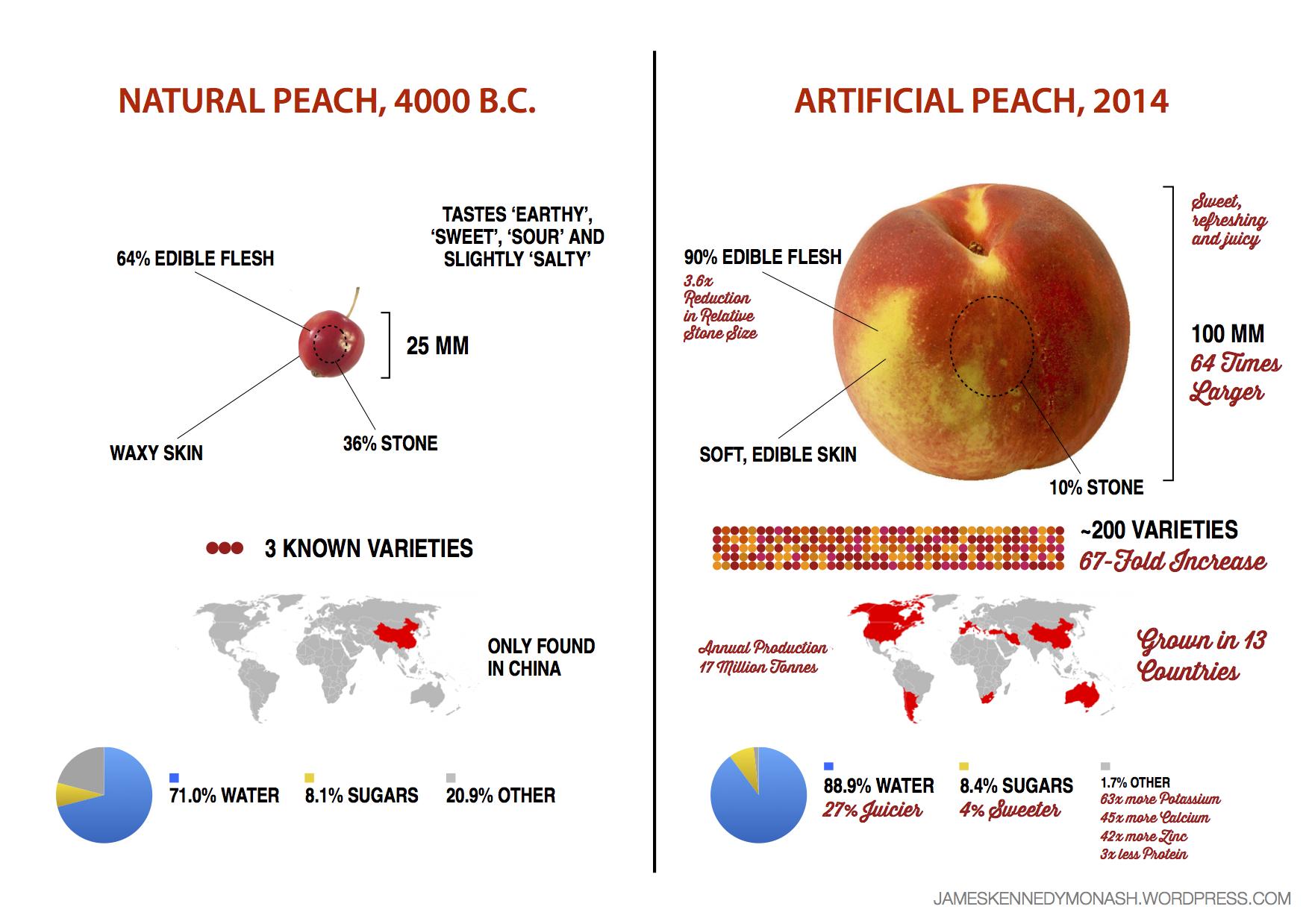 artificial-natural-peach2.0