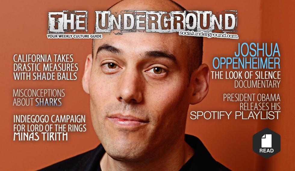 feature_underground36