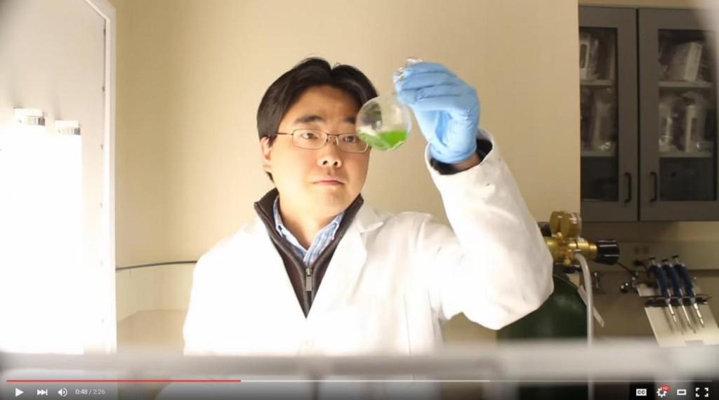 Assistant Professor Seokheun Choi
