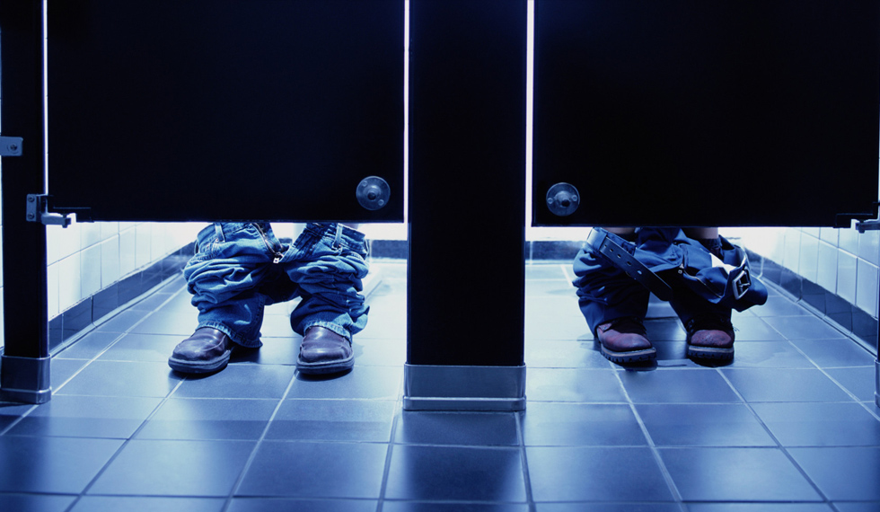 toilet seat protectors